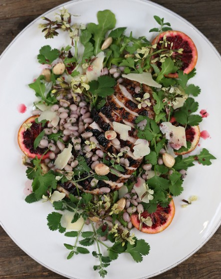 grilled chicken salad with navy beans, cilantro and blood orange